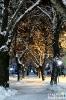 Зимна нощ на централната алея
