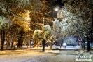 Зимна нощ на улица Демокрация в Кюстендил