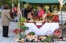 Празник на Плодородието в Кюстендил 2016 г