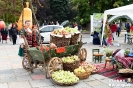 Празник на Плодородието в Кюстендил 2017 г.